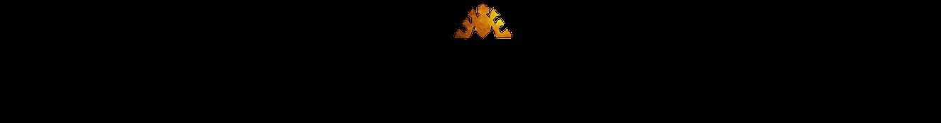 Vincent van Oss Logo
